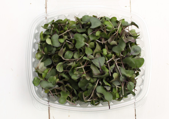 Microgreens (Cabbage, Red, 60g)