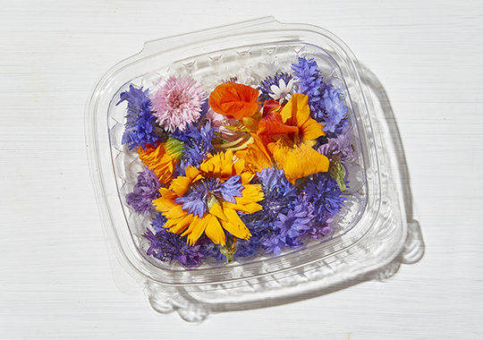Flowers, Mixed Edible - Organically Grown