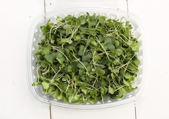 Microgreens (Broccoli, 60g)