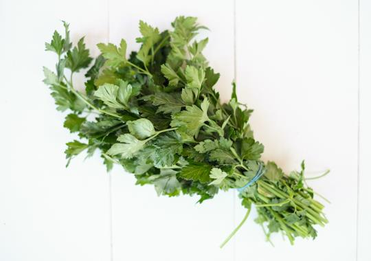 Herb (Parsley, Italian, Bunch)