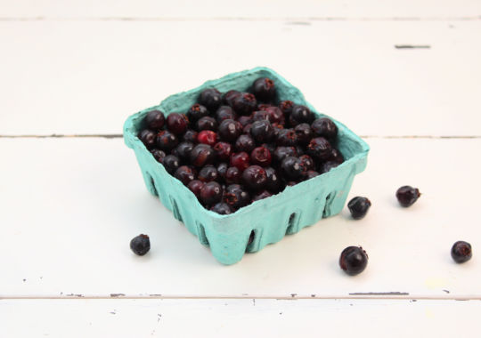 Saskatoon Berries (6 oz) - not certified organic